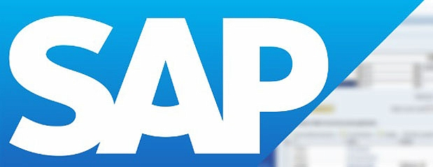 What Does A Sap Professional Do.